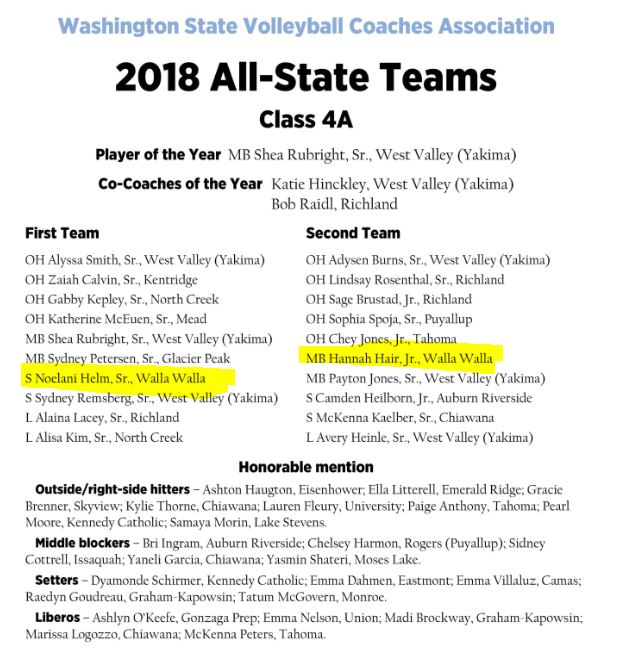 State Volleyball teams 2018
